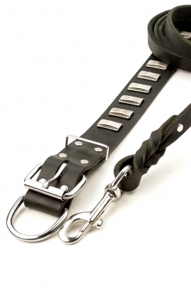 Elegant 1 1/2 inch Wide Leather Collar and Braided Leash with Stainless Steel Snap-hook. Save Money!