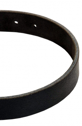 Doberman Training Collar