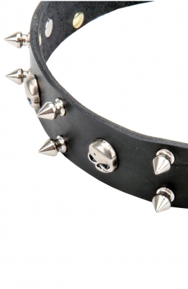 "3 Rows Leather Dog Collar ""Silver Skull"" with Nickel Spikes"