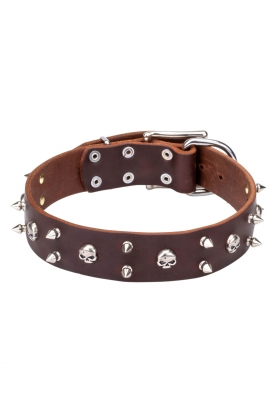 "New Spiked Leather Dog Collar ""Silver Skull"""