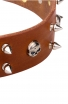 """New Spiked Leather Dog Collar """"Silver Skull"""""""