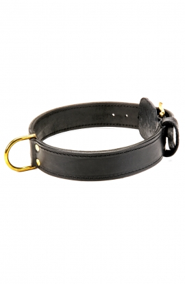 Handcrafted 2 Ply Leather Agitation Doberman Collar