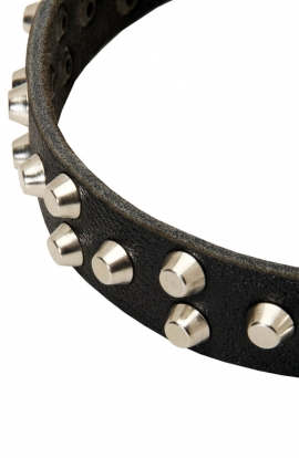 Mastiff Collar with 3 Rows of Nickel Pyramids