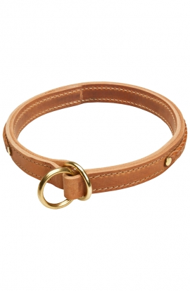 Cane Corso 2 Ply Leather Choke Dog Collar with Braids