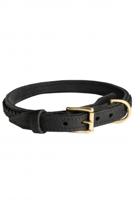 Braided Leather Amstaff Collar