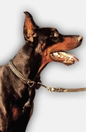 2ply Leather Doberman Collar