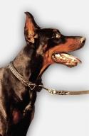 2ply Leather Doberman Collar