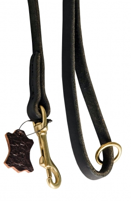 Stitched Leather Dog Leash with O-ring on the Handle