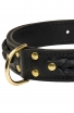 Leather Siberian Husky Collar with Fur Protection Plate