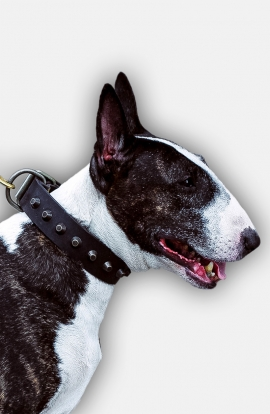 Fashion English Bull Terrier Leather Dog Collar with Old Brass Pyramids