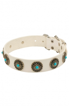 Fancy White Leather American Bulldog Collar with Blue Stones