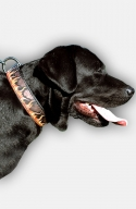 Hand Painted Leather Labrador Collar with Red Flame