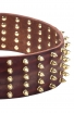 3 inch Extra Wide Leather English Bull Terrier Collar with Gold-like Spikes