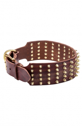 3 inch Extra Wide Leather Bullmastiff Collar with Gold Spikes
