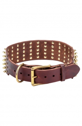 3 inch Extra Wide Leather Great Dane Collar with Gold Spikes