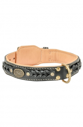 Fashion Nappa Padded Leather Dog Collar with Attractive Braids
