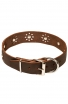 Fancy Dog Collar with Nickel Decoration for Walking in Style