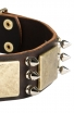 Leather Mastiff Collar with Silver Color Spikes and Vintage Brass Plates