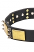 War-Style Leather American Bulldog Collar with Silver-like Spikes and Vintage Brass Plates Catalog   Products