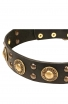 "Studded Dog Collar with Brass Decorations ""Golden Knights"""