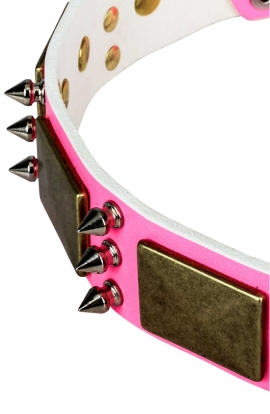 Pink Leather Dog Collar with Spikes and Old Brass Massive Plates