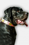 Designer Pink Leather Great Dane Collar with Spikes and Vintage Plates