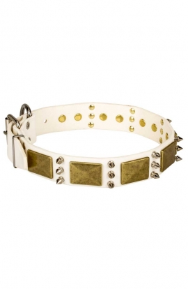 White Leather Amstaff Collar with Spikes and Vintage Plates