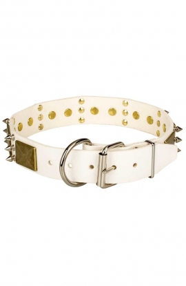 White Leather Labrador Collar with Spikes and Vintage Plates