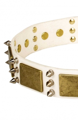 White Leather Mastiff Collar with Spikes and Vintage Plates
