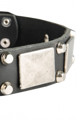 Leather Amstaff Collar with Old Nickel Plated Decor
