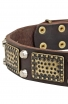 German Shepherd Collar with Vintage Brass Plates and Nickel Studs