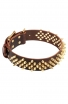Decorative Fully Spiked Leather Collar with Brass Spikes
