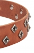 Fancy Dog Collar with Dotted Pyramids