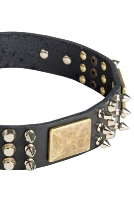 Designer Leather Doberman Collar
