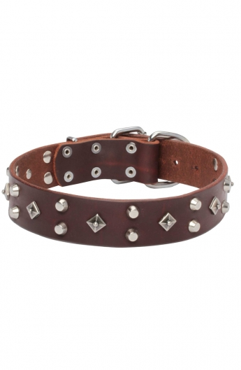 Studded Dog Collar with Nickel Studs and Silver-like Pyramids