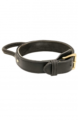 Super Durable Leather Dog Collar with Handle and Solid Brass Buckle for Easy Training