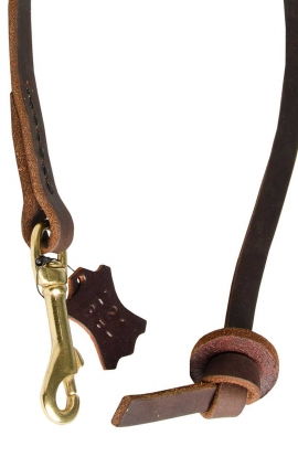 Pocket Leather Dog Lead for Better Control