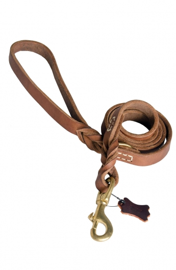 Professional Stitched Leash with D-Ring on the Handle