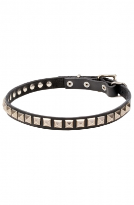 "Designer Leather Dog Collar ""Iron Snake"" with 1 Row Nickel Studs"