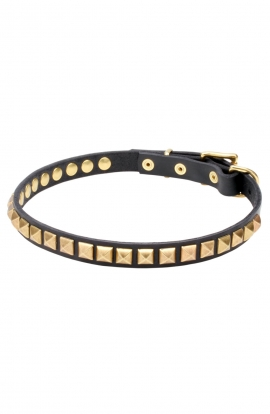 Artisan Leather Dog Collar with 1 Row Brass Studs - Golden Snake