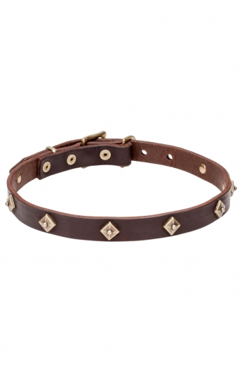 "Narrow Leather Dog Collar with Brass Pyramids ""Egyptian Magic"""