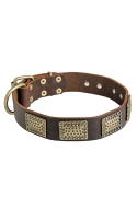 Leather Dog Collar with Vintage Look Rusted Brass Large Plates