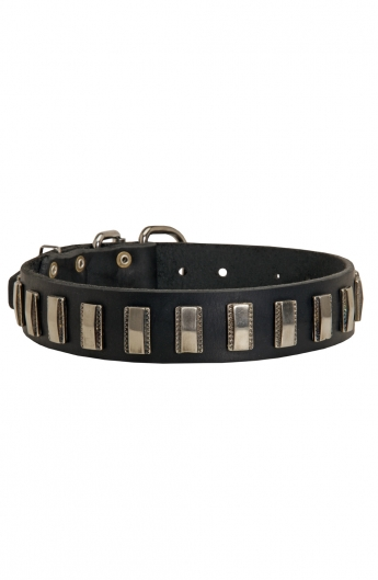 Amazing Leather Dog Collar with Smooth Nickel Plates