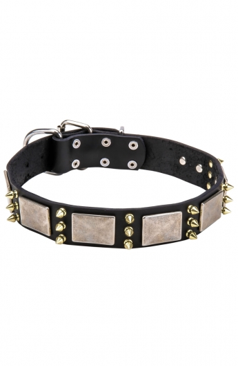 Spiked Dog Collar with Old Nickel Massive Plates