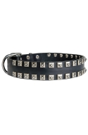 Fancy Studded Leather Dog Collar with Small Nickel Studs