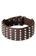3 inch Wide Spiked Leather Dog Collar with 5 Rows of Studs