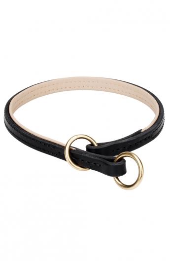 Padded Leather Choke Collar for Dog Training