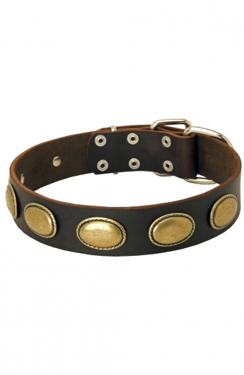 Vintage Dog Leather Collar with Oval Plates