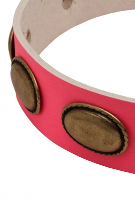 Pink Leather Girl Dog Collar with Vintage Plates