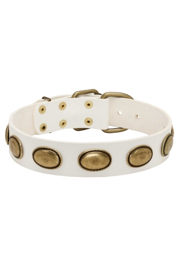 White Leather Female Dog Collar with Vintage Plates